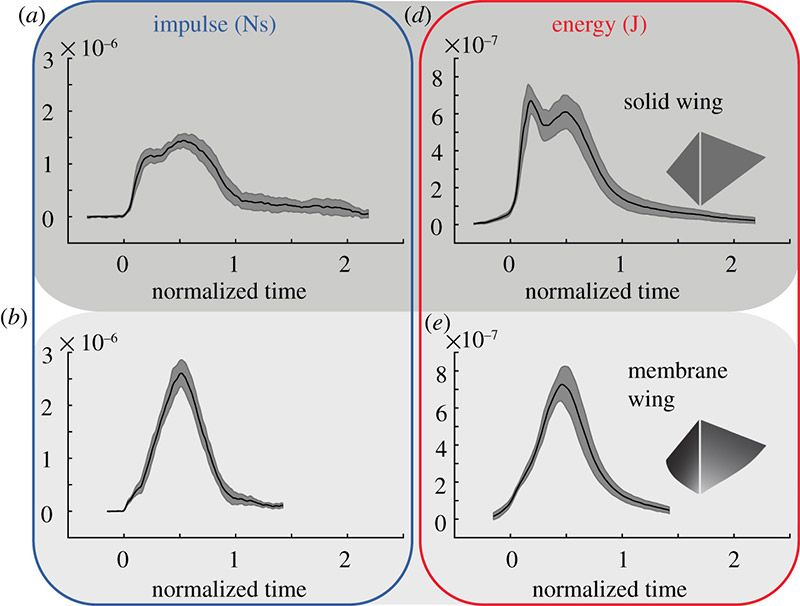 Four charts showing the differences in impulse and energy during flight between solid wings and flexible wings.