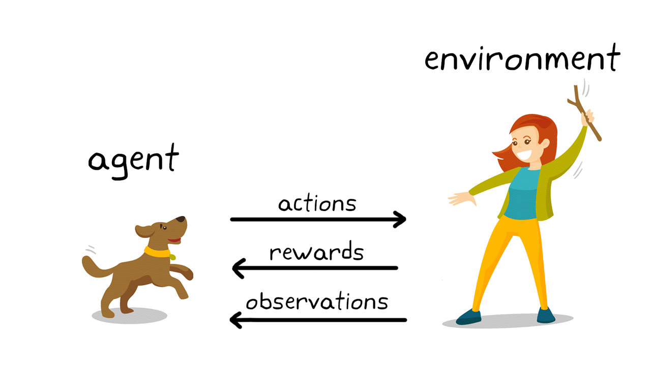 Figura 2. Reinforcement learning en el entrenamiento canino.