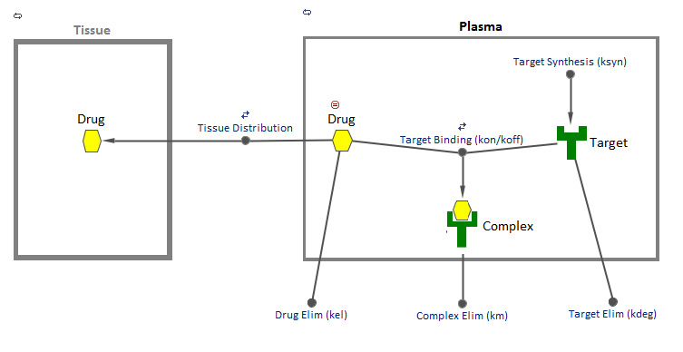 Target–Mediated Drug Disposition Model